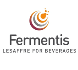 Fermentis Dry Brewing Yeast